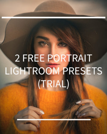 free presets for portraits